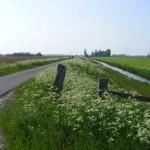Sluisweg in het voorjaar
